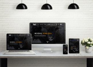 Wykorzystywanie email marketingu w działalności sklepu internetowego